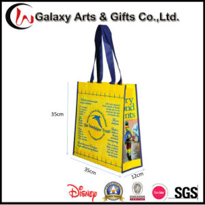 Custom Recyclable Reusable No Woven Laminated Bag/Small Tote Bag