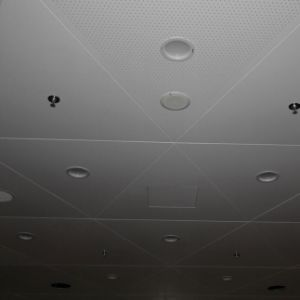 Special Design Custom Made Ceiling of Interior Decoration pictures & photos