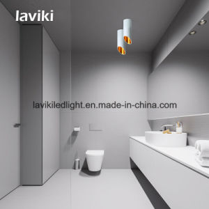 7W/10W/12W/15W Surface Mounted COB LED Downlight for Shops, Art Gallery, Ceiling Lighting pictures & photos