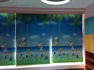 Roller Fabric Windows Blinds Home Use Windows Blinds pictures & photos