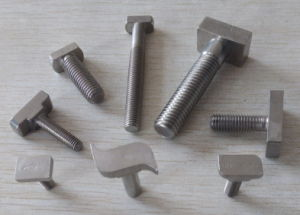 All Kinds of Stainless Steel T Bolt pictures & photos
