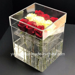 New Design Acrylic Storage Box for Flower pictures & photos