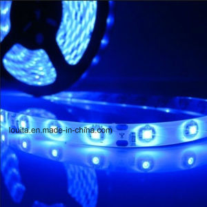 IP65 SMD 3528 300LEDs LED Flexible Strip Lighting pictures & photos