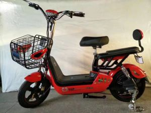 350V48V12ah Best Electric Bicycle for Adults pictures & photos