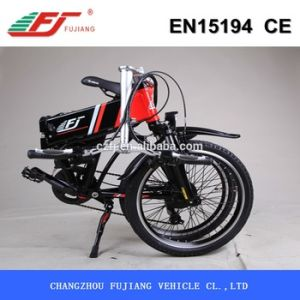 20 Inch Foldable Electric Bicycle /E-Bike /E Bicycle with Pedal Assist pictures & photos
