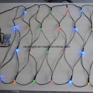 Multicolor LED Christmas Lights with Battery for Holiday Decoration pictures & photos