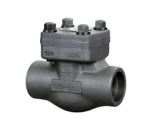 . Forged Steel Check Valve with Drawing pictures & photos