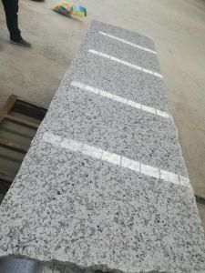 Hot Sale Natural White Flower Polished Granite for Train Station pictures & photos