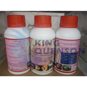 King Quenson Bactericide Agrochemical Carbendazim 98% Tc Chemical Pesticide pictures & photos
