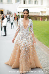 Lace Prom Party Gowns Champagne Celebrity Evening Dresses A3001 pictures & photos