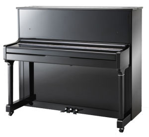 Musical Keyboard Upright Piano Kt1-118 Silent Digital System Schumann pictures & photos