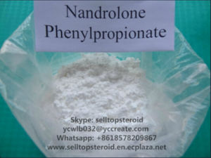 Injectable Nandrolone Phenylpropionate Raw Powder Source Npp Durabolin 100mg pictures & photos