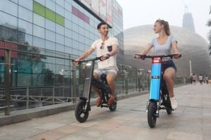 Best Electric Bicycle Folding Electric Bike with Panasonic Lithium Battery pictures & photos