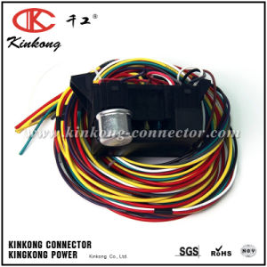 Custom Electrical Fuse Box Wiring Harness pictures & photos