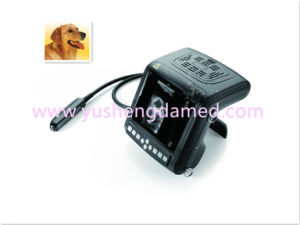 Ysd3002-Vet Hot Digital Veterinary Ultrasound Machine pictures & photos