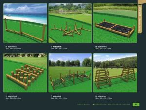 Kaiqi Indonesia Rose Wood Fitness Series Children Outdoor Playground Equipment (kq60090) pictures & photos