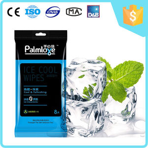 Palmlove Adult Wet Wipes pictures & photos