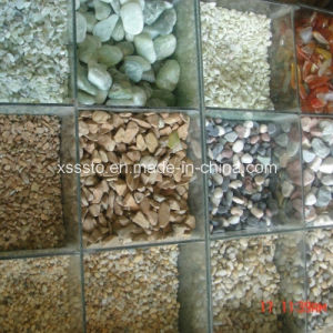 Natural Pebble Stone for Garden Decoration pictures & photos