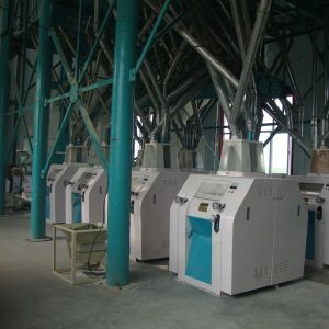 Industrial Corn Milling Machine Flour Mill Machinery (6FYF) pictures & photos