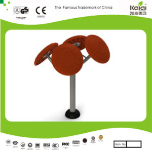Kaiqi Outdoor Fitness Equipment - Taichi Rollers (KQ50213Q) pictures & photos