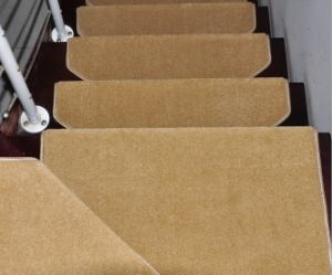 Magic Tape Buckle Pile Stair Carpet Area Rugs pictures & photos