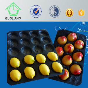 Made in China Food Packaging Manufacture Disposable Plastic Fruit Tray pictures & photos