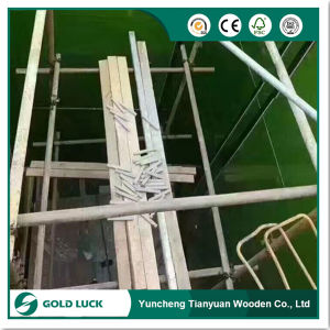 Plastic Coated Green Film Faced Plywood for Building pictures & photos