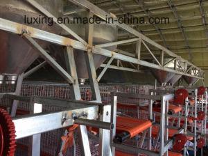 Gantry Loading Machine pictures & photos