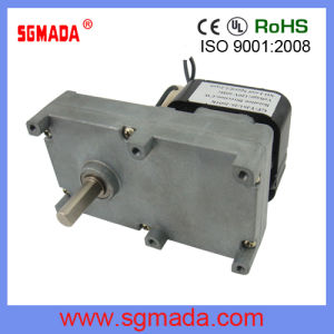 China Ac Shade Pole Geared Motor For Rotisserie China