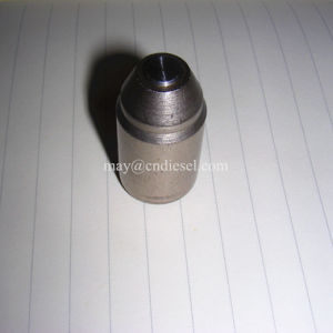 Pencil Fuel Injector Nozzle 8n4694 8n4696 8n8794 8n8796 8n1831 pictures & photos