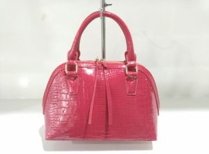 Designer Fashion Lady Cross Handbags with Shinny Crocodile Material (A-008) pictures & photos