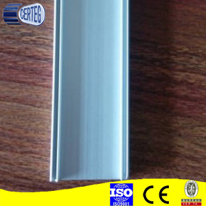 LED Strip Profile Aluminum Alu Bar Aluminum Pipe T5 T8 Tube pictures & photos