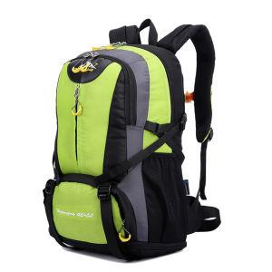 University Custom Fashion Nylon Backpack pictures & photos