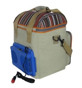 Portable Electronic Soft Cooler Bag 20liter DC12V for Outdoor Leisure Activity Use pictures & photos