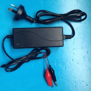12V 2A Automatic3 Stage Battery Charger pictures & photos