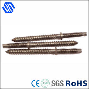 Stainless Steel Self Drilling Screw Special Two Kinds of Thread Rod Screw pictures & photos