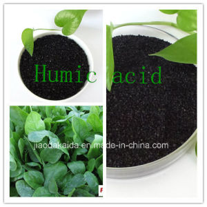 Fertilizers Humic Acid 99%