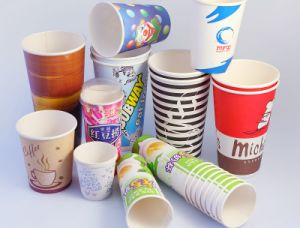 Intelligent Design Paper Cup Machine Zb-09 pictures & photos