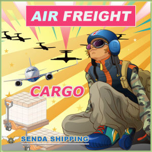 Shipping Agent of Air Cargo
