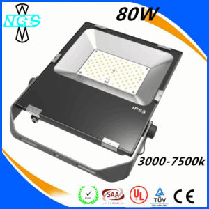 Outside Garden Landscape Lamp LED Flood Light 30W pictures & photos