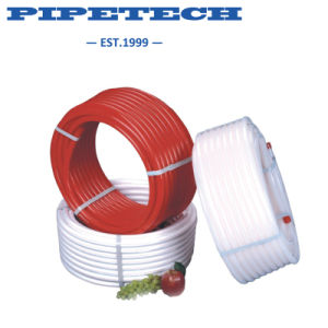 Cold and Hot Water PPR Pipes and Fittings Ce Quality pictures & photos