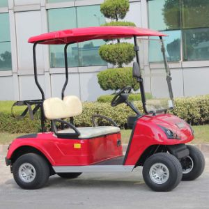 2 Seats Electric Golf Cart with Ce Certificate Dg-C2 pictures & photos