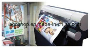 Adhesive Printing Materials Block out PP Film pictures & photos