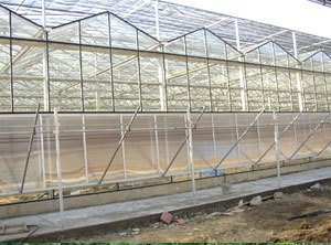 Sunshade Screen / Greenhouse Roofing pictures & photos