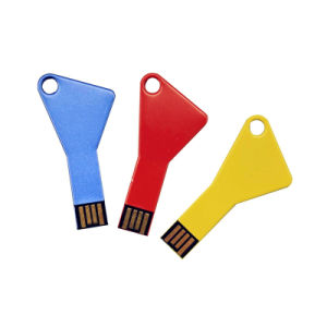 Cheap Key Shape Promotional Customized Logo Colorful USB Flash Pendrive pictures & photos