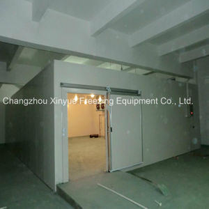 Rapid Freezing Cold Storage Room with Frostless Technology pictures & photos
