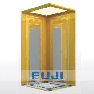 FUJI Cheap Elevator Lift for Homes pictures & photos