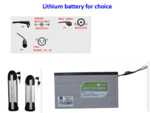 250W-1000W China Factory Electric Rickshaw Kits pictures & photos