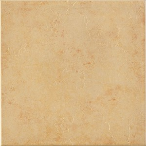 Cheap Price 30X30cm Interior Ceramic Wall/Floor Tile pictures & photos