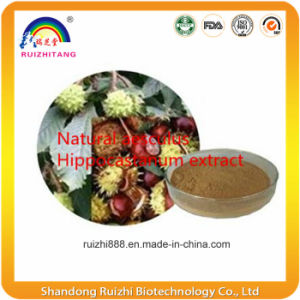 GMP Factory Supply 100% Natural Horse Chestnut Extract Escin pictures & photos